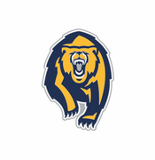 California Golden Bears WinCraft Secondary Lapel Pin - Navy