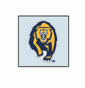 California Golden Bears WinCraft Secondary Tattoo 4-pack