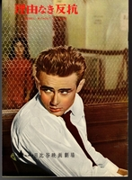 MBH27351  Rebel Without a Cause 1955 Japan Movie Pamphlet