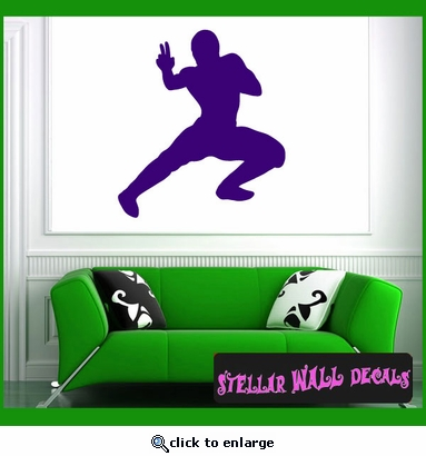 Kung Fu NS003 Wall Decal - Wall Sticker - Wall Mural SWD