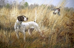 English Pointer: The Single by Ross B. Young - giclee