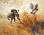 German Shorthaired Pointer: Intense by Ross B. Young - giclee