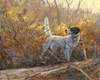 """<font size=""""2"""" font color=""""red"""">NEW</font> English Setter and woodcock: Parlor Tricks - giclee on paper"""