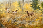 """<font size=""""2"""" font color=""""red"""">NEW</font> German Shorthaired Pointer: Doubled Down - giclee on paper"""