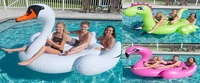 Giant Inflatable Pool Floating Swan|Dinosaur|Flamingo