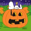 Peanuts Great Pumpkin Party Dessert Napkins 16 Pack