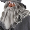 The Hobbit Gandalf Beard and Wig