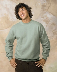 Hanes Men's Fleece Sweatshirt
