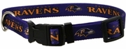 Baltimore Ravens Collar or Leash