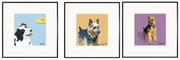 Border Collie, Australian Terrier, Airedale Prints