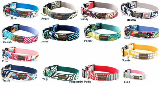 Classic Collars, Leashes and Harnesses