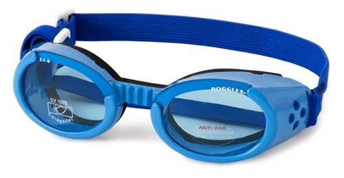 Doggles ILS Shiny Blue with Blue Lens