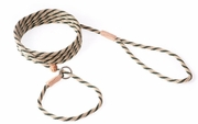 Gold/Hunter Nylon Slip Lead with stop