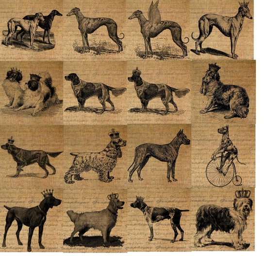 Greyhound/Whippet, Japanese Chin, Red & White Setter, Dog with Slippers, Irish Setter, Spaniel, Great Dane, Visla, Golden Retriever, Pointer & Old English Sheepdog Feeders & Toyboxes