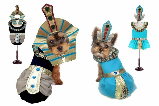 King Mutt or Cleopatra Costume