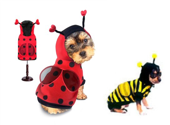 Lady Bug & Bumble Bee