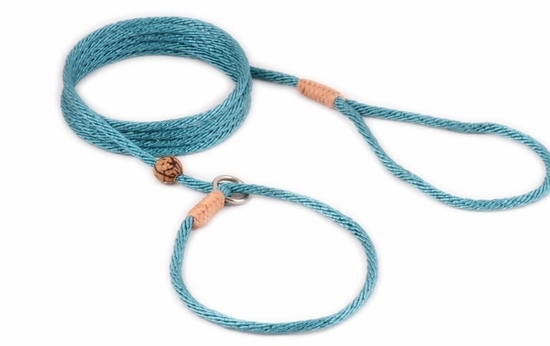 Teal Green Nylon Slip Lead with Stop