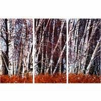 Birch Forest Metal Wall Art