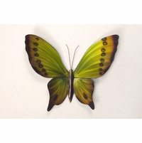Chartuese Beauty Butterfly Wall Art