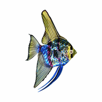 Tropical Angel Fish Metal Wall Art Hanging