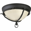Thomasville Lighting (P3837-80) Santiago 2 Light Close-to-Ceiling Fixture in Forged Black