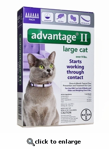 12 MONTH Advantage II Flea Control for Cats Over 9 lbs