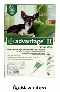 12 MONTH Advantage II Flea Control for Dogs Under 10 lbs