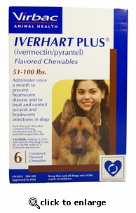 12 MONTH Iverhart Plus 51-100 lbs