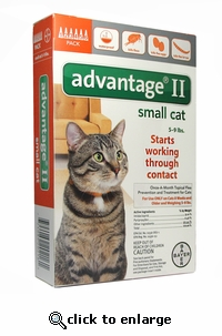 6 MONTH Advantage II Flea Control for Cats Under 9 lbs