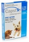 Capstar for Cats and Dogs 2-25 lbs 6 tablets BLUE