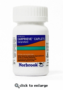 Carprieve Caplets (Norocarp) 100mg 60ct