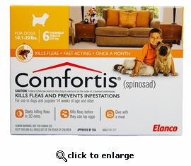 Can You Use Comfortis For Dogs On Cats