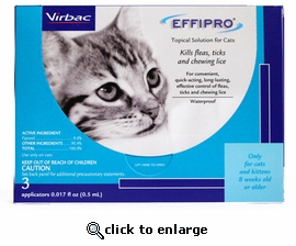 Effipro for Cats 3 Month
