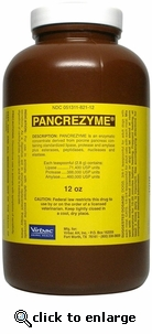 Pancrezyme 12oz Powder