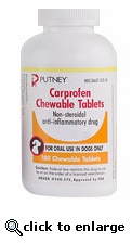 Putney Carprofen Chewable Tablets 25mg per tablet