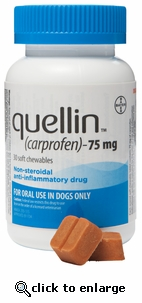 Quellin 75mg 180 chewables