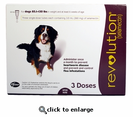 Revolution for dogs 85.1 to 130 lbs (3 Month)