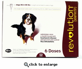 Revolution for dogs 85.1 to 130 lbs 6 Month