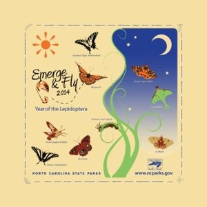 Year of the Lepidoptera 2014