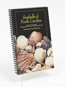 Seashells of North Carolina