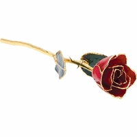 Red 24k Gold Dipped Rose