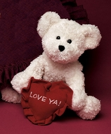"Boyds Bears Bear Hugs ""Love Ya"" Valentine Plush"