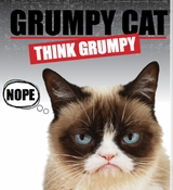 Ganz Grumpy Cat Products