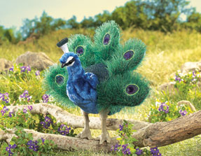 Folkmanis Puppet <br>Small Peacock