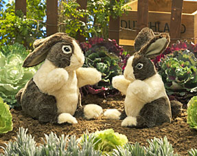 Folkmanis Puppets <br>Dutch Rabbit