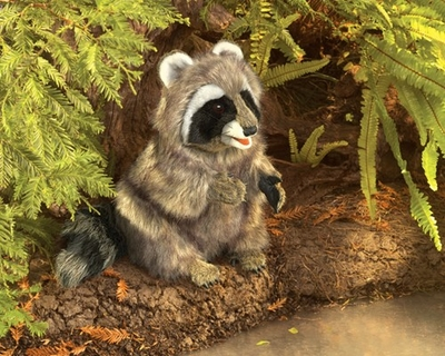 Folkmanis Puppet <br>Raccoon