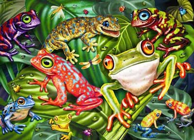 Ravensburger 35 Piece <br>Tropical Frogs