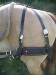 Pack Saddle Britchen