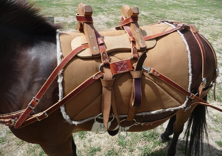 Sawbuck Pack Saddle for Sale
