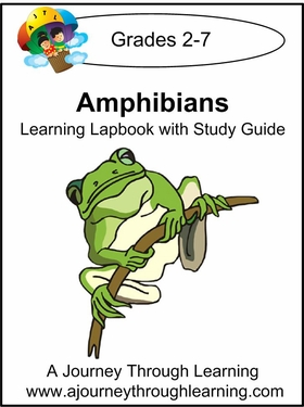 Amphibians Lapbook with Study Guide-8.00